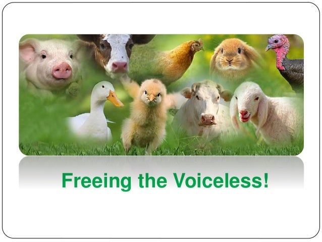 Freeing the Voiceless!