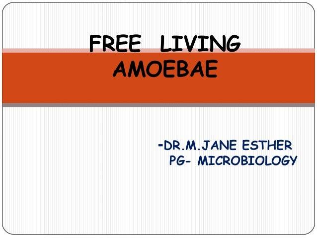 FREE LIVING AMOEBAE -DR.M.JANE ESTHER PG- MICROBIOLOGY