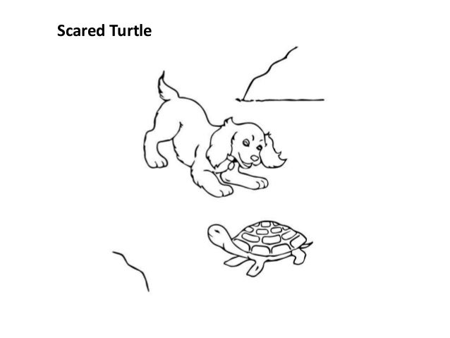 Free printable cute turtle coloring pages for kids