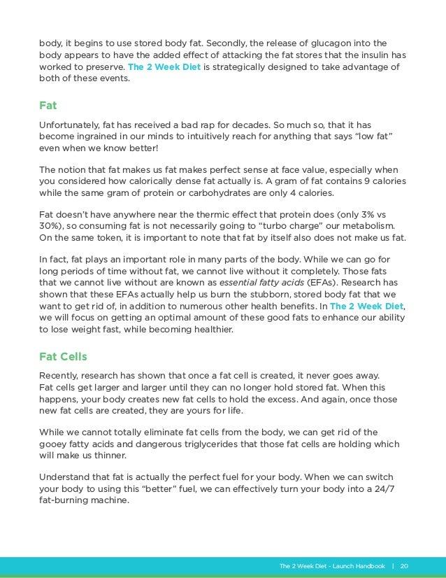 perfect fat burn diet pdf