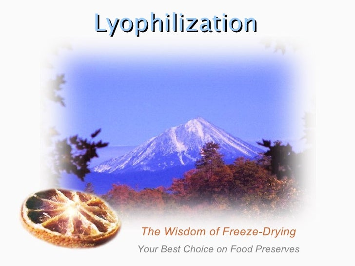 Lyophilization The Wisdom of Freeze-Drying Your Best Choice on Food Preserves