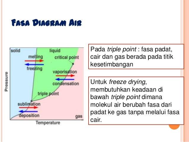 Freeze drying fasa diagram air pada triple point ccuart Choice Image