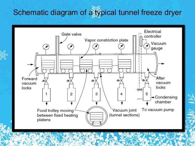 how to make a vacuum chamber for freeze drying