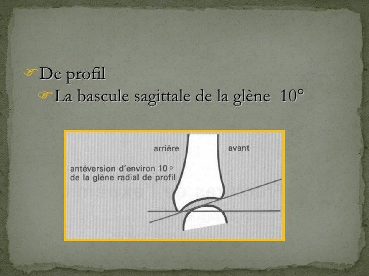 <ul><li>De profil </li></ul><ul><ul><li>La bascule sagittale de la glène  10° </li></ul></ul>