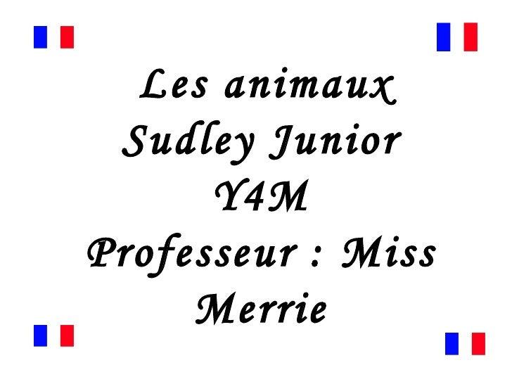 Les animaux Sudley Junior Y4M Professeur : Miss Merrie