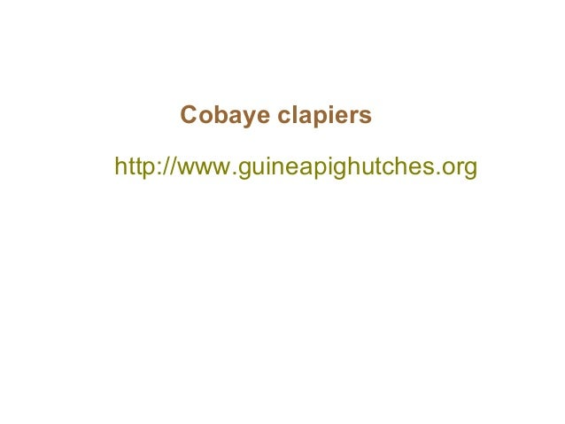 http://www.guineapighutches.org Cobaye clapiers