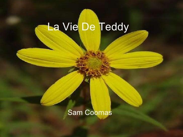 La Vie De Teddy Sam Coomas