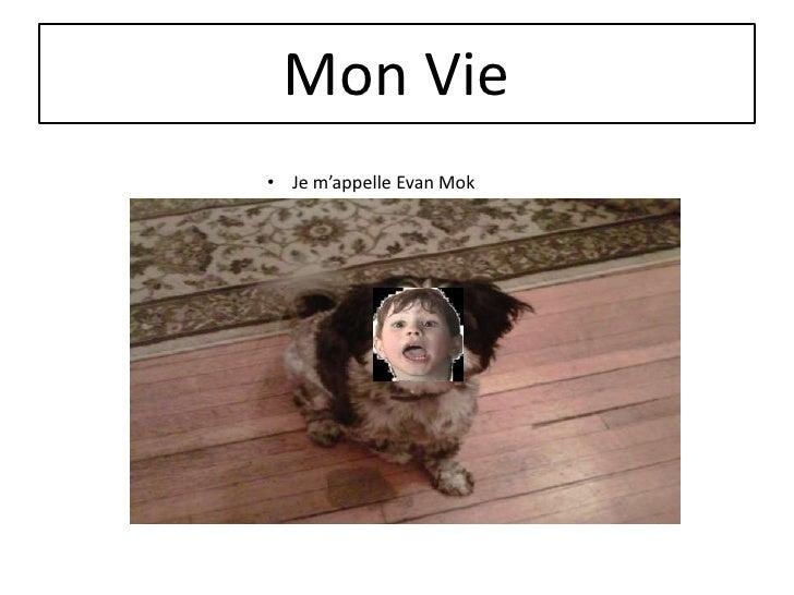 Mon Vie• Je m'appelle Evan Mok