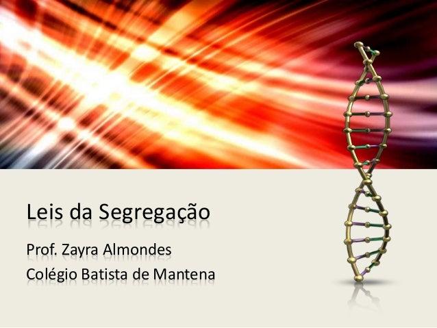 Leis da Segregação Prof. Zayra Almondes Colégio Batista de Mantena