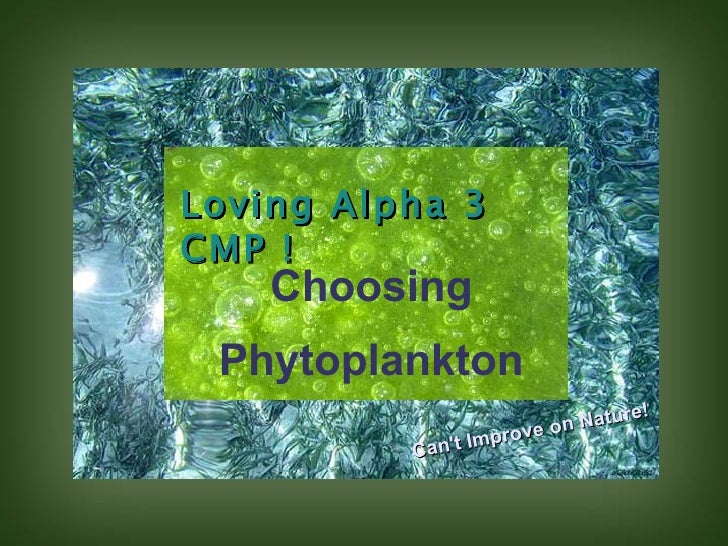 Loving Alpha 3 CMP ! Choosing Phytoplankton Can't Improve on Nature!