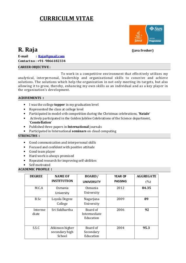 Software Developer CV Rne I VisualCV Zge Mi Rnekleri Veritaban Sample Of  Attorney Resume Java Developer  Java Resume Sample