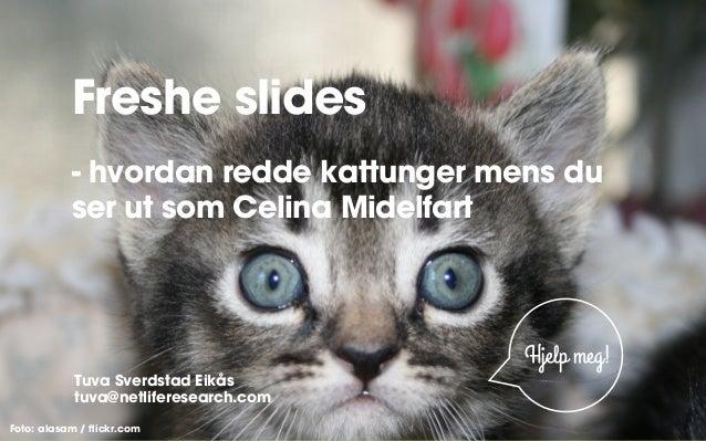 Freshe slides - hvordan redde kattunger mens du ser ut som Celina Midelfart  Hjelp meg! Tuva Sverdstad Eikås tuva@netlifer...