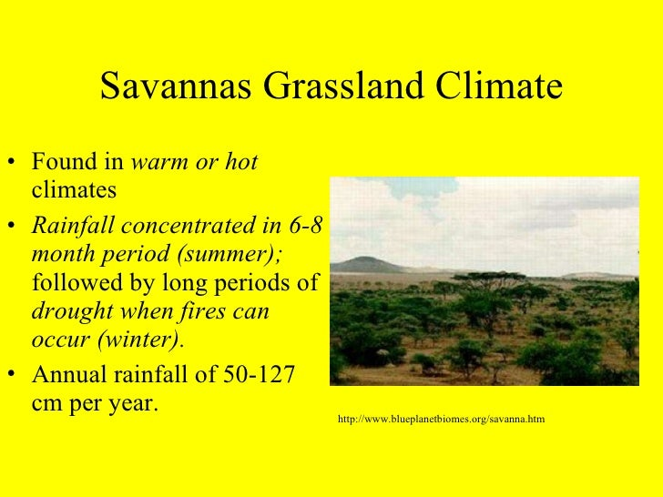 temperate grassland physical features Introduction: temperate grasslands are composed of a rich mix of grasses and forbs and underlain by some of the world's most fertile soils since the development of.