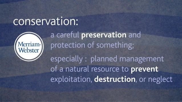 Freshwater Conservation Strategies for the Energy Industry Slide 3