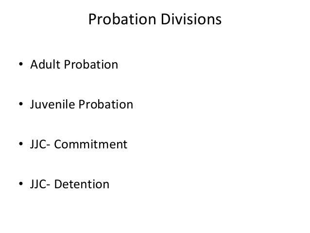 denver adult probation task manager