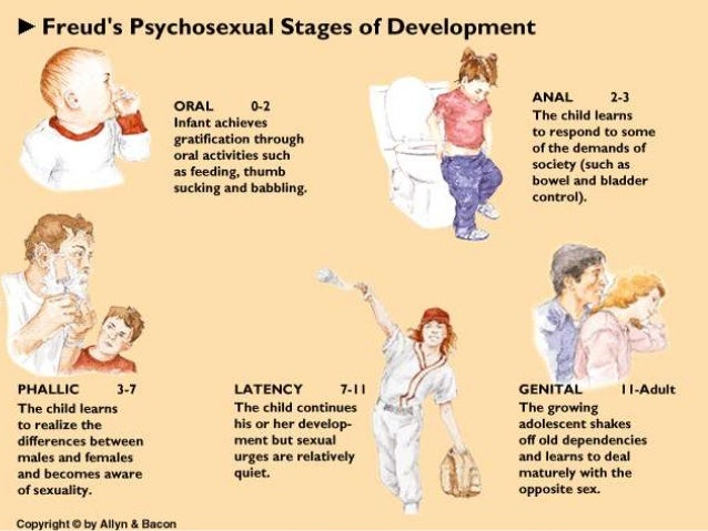  Freud believed that gratification during each stage in important if the individual is not to be fixated at that level. ...