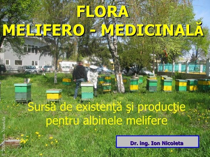 FLORA  MELIFERO -   MEDICINAL Ă Surs ă de existenţă şi producţie pentru albine le melifere Dr. ing. Ion Nicoleta