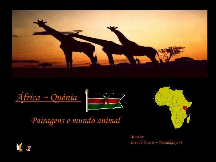 África ~ Quénia  Paisagens e mundo animal Musica: Brenda Fassie – Nomakanjani