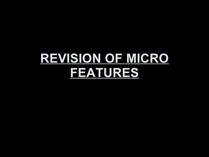 REVISION OF MICRO FEATURES