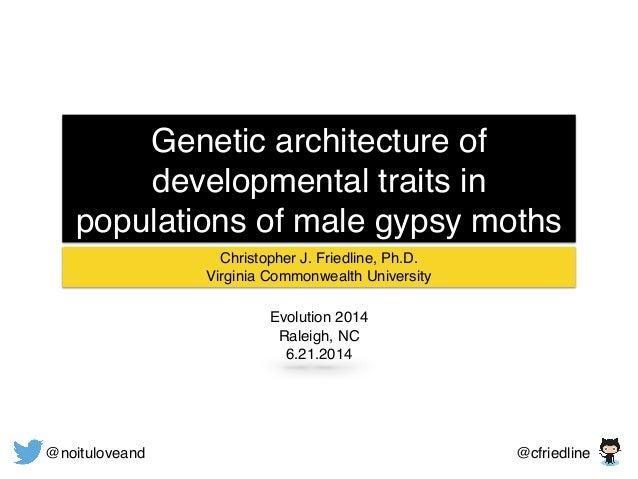 Genetic architecture of developmental traits in populations of male gypsy moths Christopher J. Friedline, Ph.D.! Virginia ...