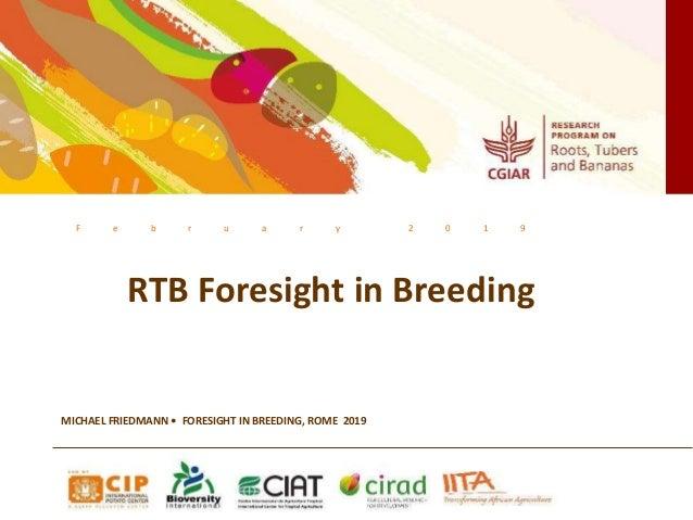 F e b r u a r y 2 0 1 9 RTB Foresight in Breeding MICHAEL FRIEDMANN • FORESIGHT IN BREEDING, ROME 2019
