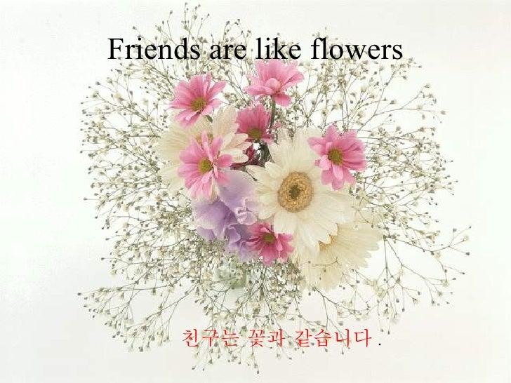 Friends are like flowers 친구는 꽃과 같습니다 .