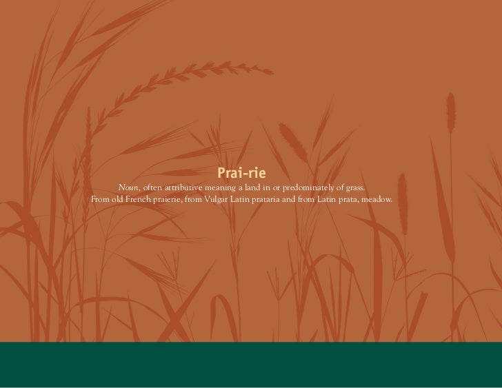 Prai-rie       Noun, often attributive meaning a land in or predominately of grass.From old French praierie, from Vulgar L...