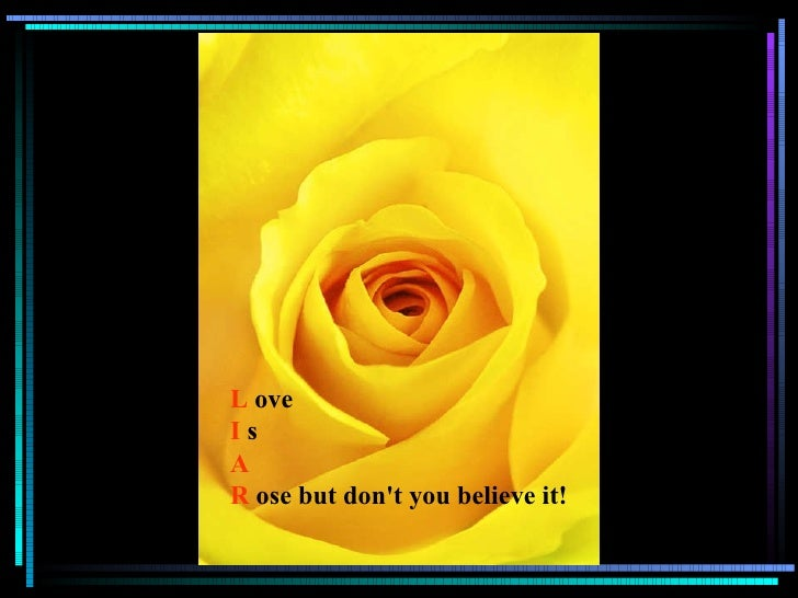 L   ove I   s A R   ose but don't you believe it!