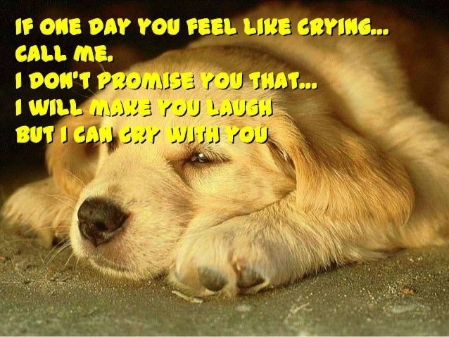 If one day you feel like crying… Call me. I don't promise you that… I will make you laugh But I can cry with you