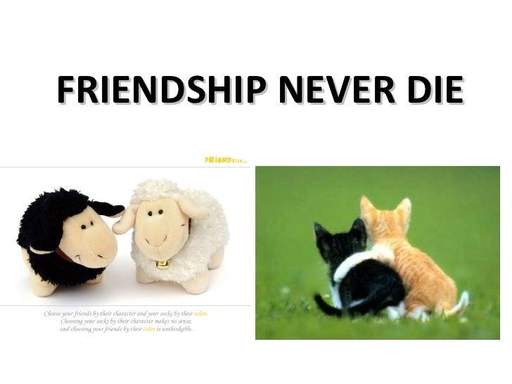 FRIENDSHIP NEVER DIE
