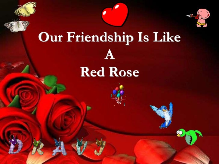 Our Friendship Is Like A Red Rose<br />