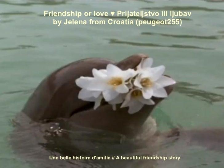Une belle histoire d'amitié / A  beautiful   friendship  story    Friendship or love ♥ Prijateljstvo ili ljubav   by Jelen...