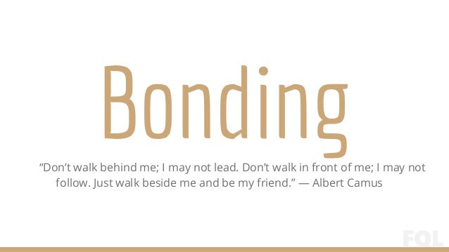 Bonding Quotes Custom Friendship Quotes