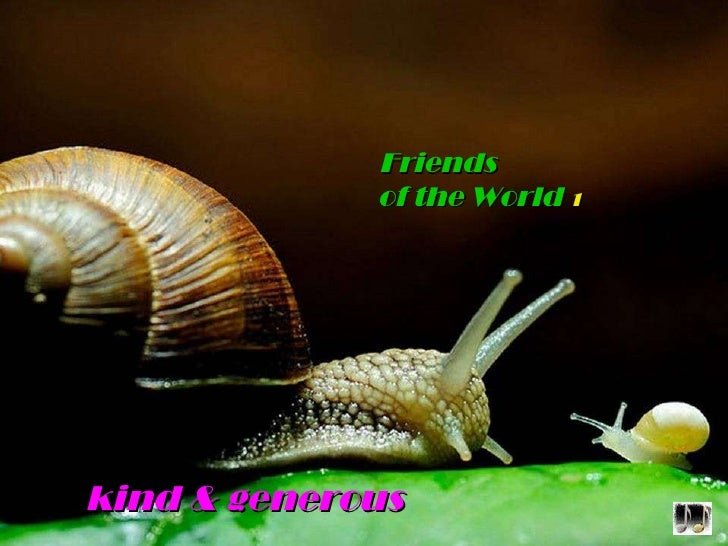 kind & generous Friends   of the World   1