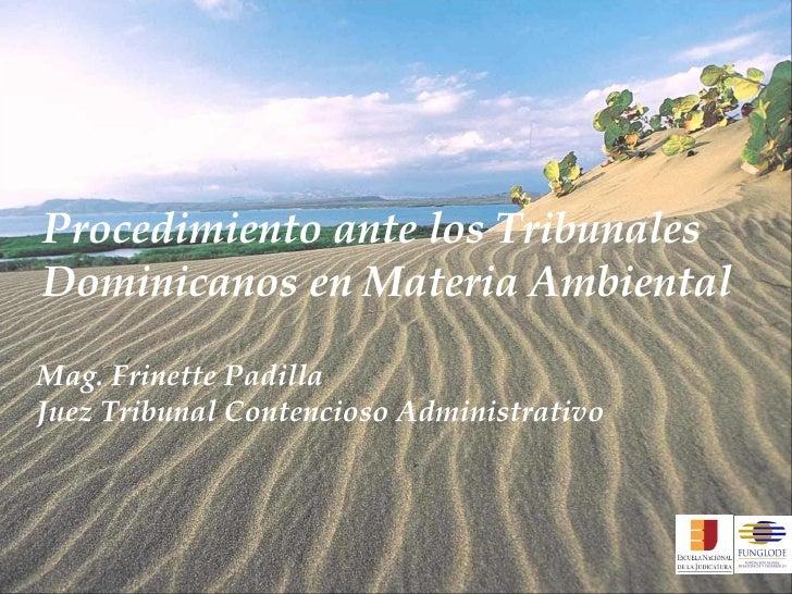 Procedimiento ante los Tribunales Dominicanos en Materia Ambiental Mag. Frinette Padilla Juez Tribunal Contencioso Adminis...