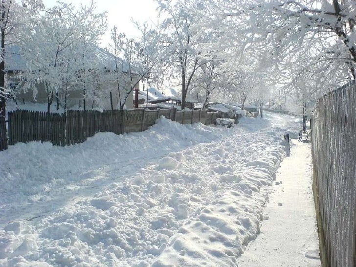 Frio invierno Slide 2