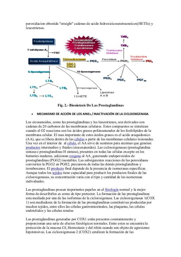 biosintesis steroid saponin
