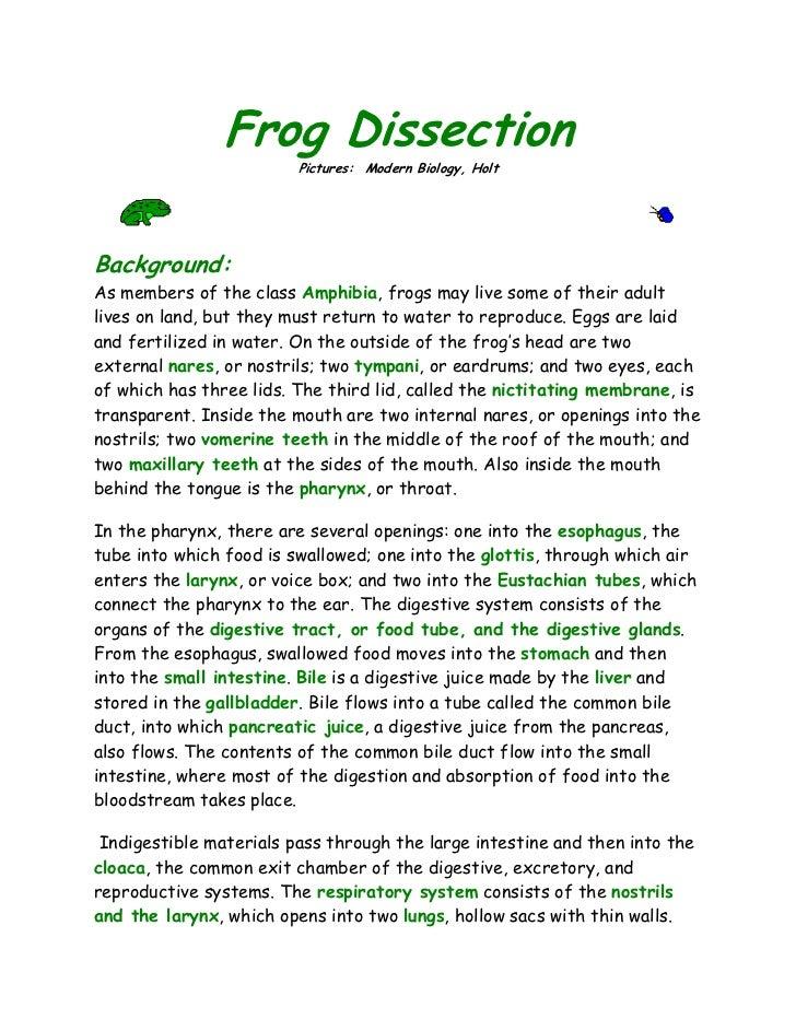 Essay on frog