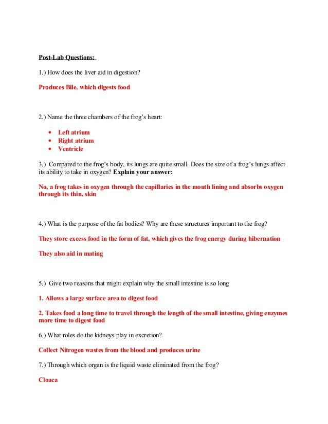 Printables Frog Dissection Worksheet frog dissection lab answer key medulla oblongata 12 post lab