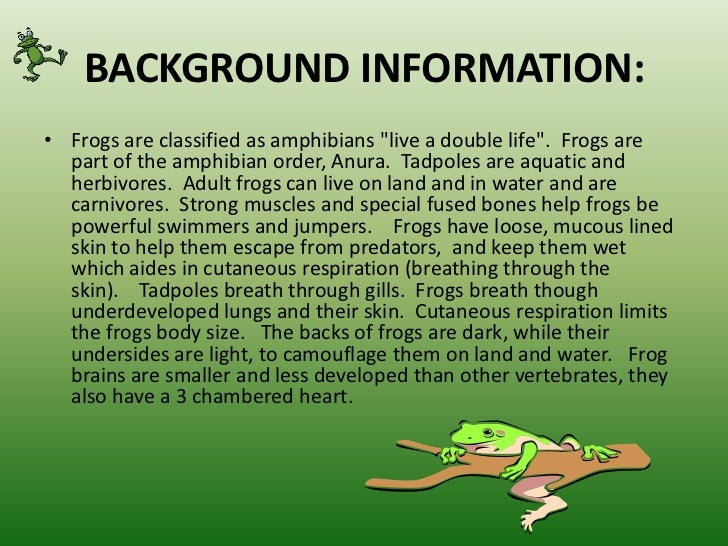 Frog dissection powerpoint
