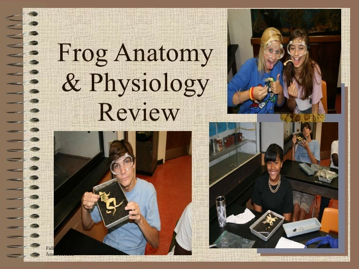 Frog Anatomy  & Physiology  Review