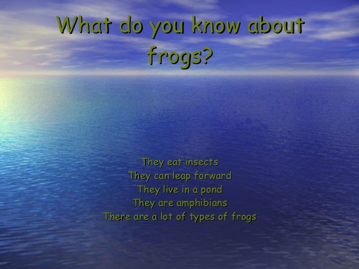 What do you know about frogs? They eat insects They can leap forward They live in a pond They are amphibians There are a l...