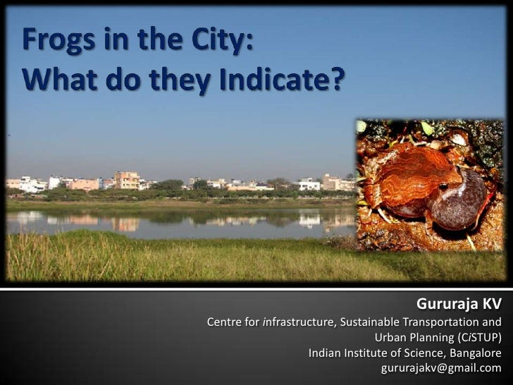 Frogs in the City:What do they Indicate?<br />Gururaja KV<br />Centre for infrastructure, Sustainable Transportation and <...