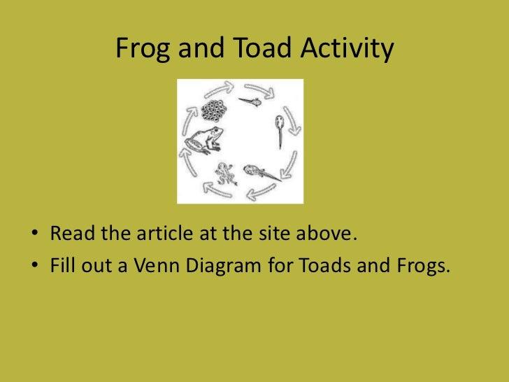 Frog Web Quest