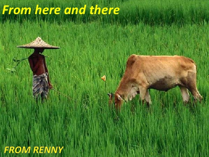 From here and there<br />From Renny<br />