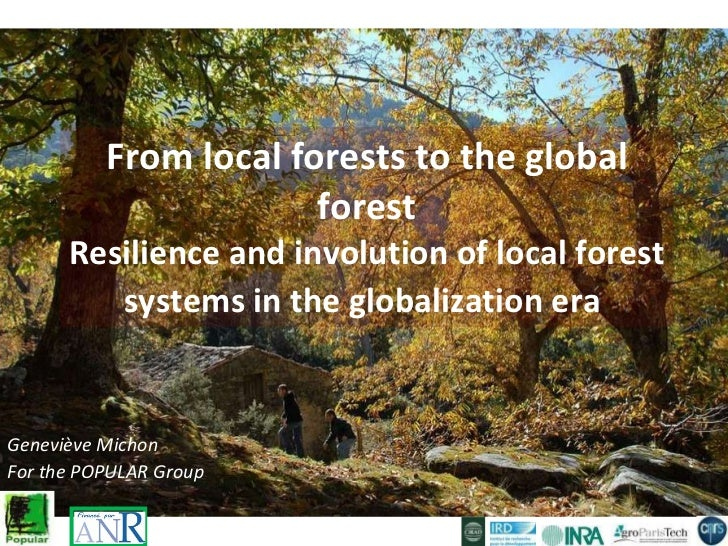 From local forests to the global forest Resilience and involution of local forest systems in the globalization era   Genev...