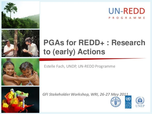 PGAs for REDD+ : Researchto (early) ActionsEstelle Fach, UNDP, UN-REDD ProgrammeGFI Stakeholder Workshop, WRI, 26-27 May 2...