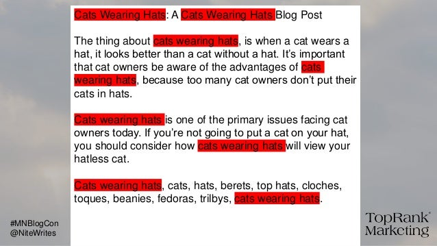 Cats Wearing Hats: A Cats Wearing Hats Blog Post The thing about cats wearing hats, is when a cat wears a hat, it looks be...