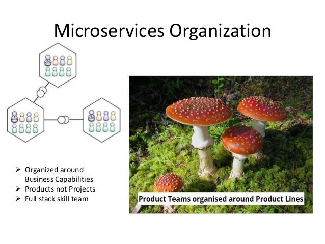 Microservices Organization  Organized around Business Capabilities  Products not Projects  Full stack skill team