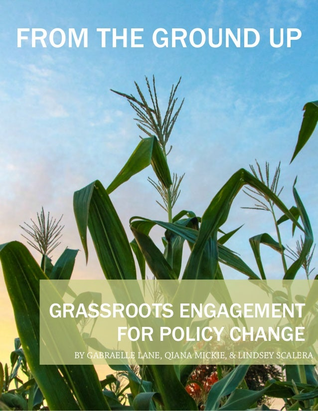GRASSROOTS ENGAGEMENT FOR POLICY CHANGE FROM THE GROUND UP BY GABRAELLE LANE, QIANA MICKIE, & LINDSEY SCALERA